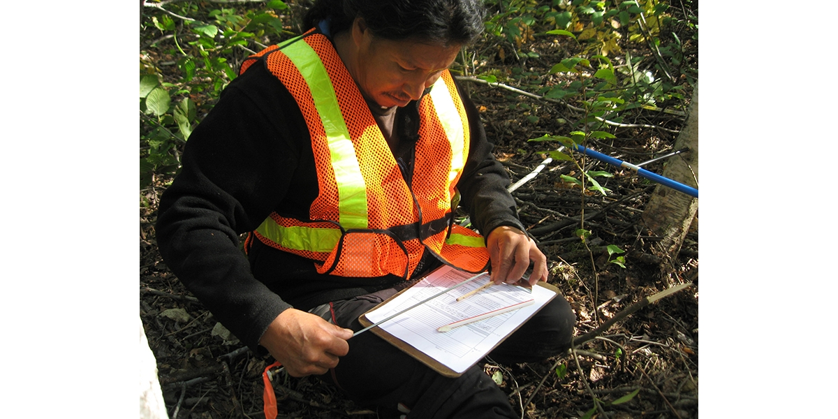 Terrestrial Assessment, East Side Road Authority | See More